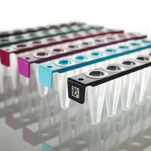 FrameStrip PCR stripy s vypouklým víčkem | Institute of Applied Biotechnologies