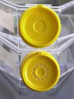 Tissue culture flask 25 cm / filter screw cap, 360 pieces