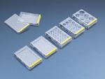 Tissue culture test plate, 24 wells (4 pcs), 72 pieces